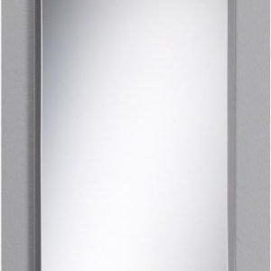 Kehyksetön peili fasetti 300x800 mm