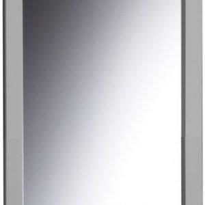 Kehyspeili Palkki alumiini 460x1060 mm
