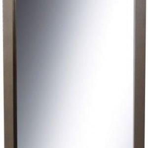 Kehyspeili Palkki shamppanja 460x1060 mm