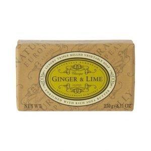 Naturally European Naturally European Ginger & Lime Palasaippua 230 g