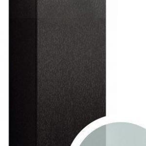 Seinäkaappi Forma 70x30x15 cm huurrelasi/musta tammi